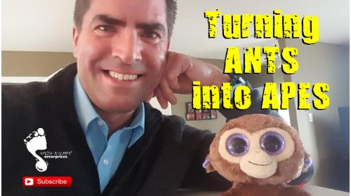 Kevin Bulmer Video Blog: ANTs vs APEs