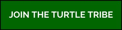 Button - Join the Turtle Tribe